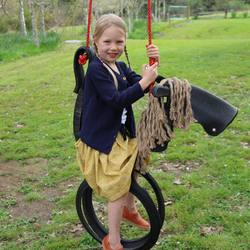 Buy Horse tyre swing in NZ New Zealand.