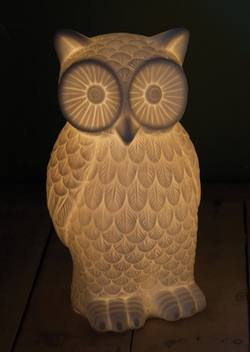 Large porcelain owl lamp