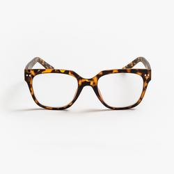 Buy Mia matt tortoise shell reading glasses in NZ New Zealand.