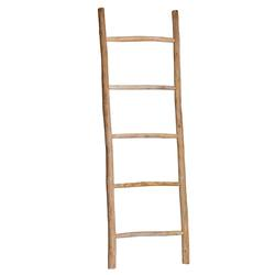 Buy Natural teak ladder 200cm high in NZ New Zealand.