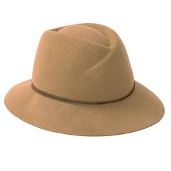 Buy Wool felt hat camel in NZ New Zealand.